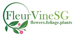 FleurVineSG